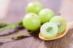 Indiańska agrestowa owoc w łyżce Fotografia Stock