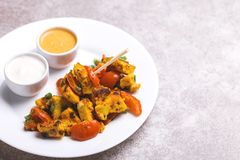 Indiańska kuchnia Paneer Tikka Kabab azjatykcia sałatkę szczegółowa artystyczne Eiffel rama France metalicznego poziomy Paris str Obraz Royalty Free