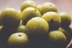 Indiański agrest lub owoc Amla lub avla, selekcyjna ostrość Zdjęcie Royalty Free