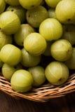 Indiański agrest lub owoc Amla lub avla, selekcyjna ostrość Zdjęcia Royalty Free