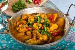 Indiański curry fotografia stock