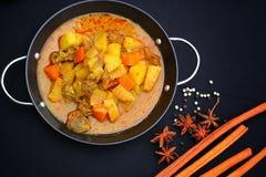 Indiański curry i pikantność. Zdjęcia Royalty Free