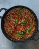 Indiański jagnięcy curry Zdjęcia Royalty Free