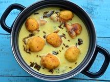 Indiański Jarski curry zdjęcia stock