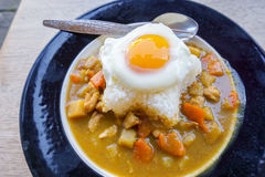 Indiański jedzenie: wołowina z Smażącym jajkiem na ryż w naczyniu horizo obrazy stock