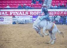 Indiański krajowy finału rodeo Obraz Royalty Free