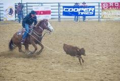 Indiański krajowy finału rodeo Zdjęcie Stock