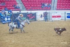 Indiański krajowy finału rodeo Zdjęcie Royalty Free