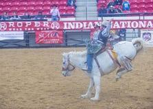 Indiański krajowy finału rodeo Obrazy Royalty Free