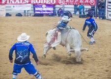 Indiański krajowy finału rodeo Obraz Stock