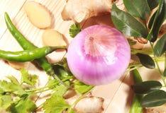 Indiański masala imbir, liście, zieleni chłodni, cebula i kolendery, fotografia stock