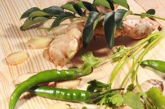Indiański masala imbir, liście, zieleni chłodni, cebula i kolendery, fotografia royalty free