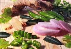 Indiański masala imbir, liście, zieleni chłodni, cebula i kolendery, obrazy royalty free