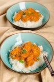 Indiański naczynie - kurczaka tikka masala słuzyć z ryż i garnishe Obraz Royalty Free