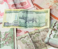 Indiański pieniądze Nepal rupii notatki - Nepal Rastra banka waluty - Obraz Royalty Free