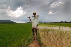 Indiański Rolnik obrazy stock
