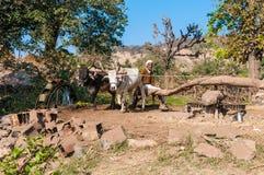 Indiański rolnik działa system irygacyjny fo Obrazy Stock