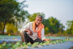 Indiański rolnik sprawdza jego arbuza pole zdjęcie stock