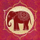 Indiański słoń Zdjęcie Stock