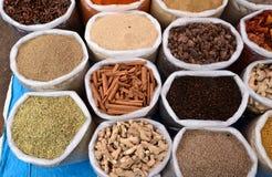 Indiańskie pikantność obrazy stock