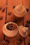 Indiańskiej pikantności Gwiazdowy anyż w Handmade Ceramicznym zbiorniku obrazy royalty free