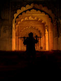 india Royaltyfri Fotografi
