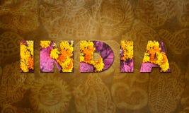 India royalty-vrije stock foto's