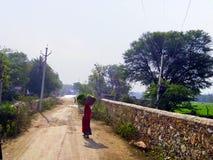 india Arkivbild