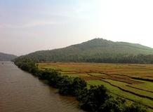 India Agriculture on River Bank stock photography