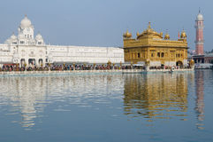 India, Amritsar, Golden temple Royalty Free Stock Photo