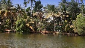 India,  bank of the Kerala backwaters stock video