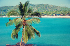 India. Beach landscape. Royalty Free Stock Images