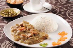 India cashew chicken curry and rice Royalty Free Stock Photography