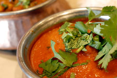 India curry Stock Photography