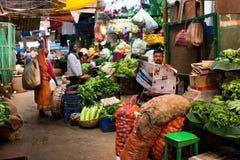 INDIA: De plantaardige verkoper leest een krant en wacht op de klanten op de oude stadsmarkt Stock Afbeelding