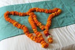 INDIA, Delhi, New Delhi, INDIAN WELLCOME FLOWERS Stock Image