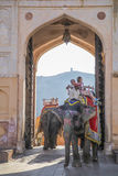 India elephant with colorful paintting with mahout on top at Amber Palace, Rajasthan, India Stock Photos
