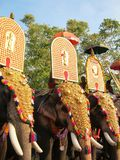 India festival elephants golden headresses Stock Photo