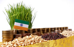 India flag waving with stack of money coins and piles of wheat. And rice seeds Stock Photos