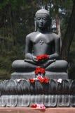 India - Goa stock afbeeldingen