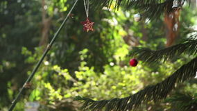 INDIA, GOA - 2012: Indian girl decorates a Christmas tree in India in Goa.  stock footage