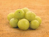 India gooseberry Royalty Free Stock Image