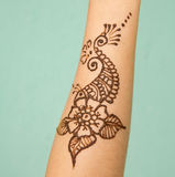 India henna on hand Royalty Free Stock Image