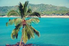 India Het Vulkanische Strand van Hawaï Royalty-vrije Stock Afbeeldingen