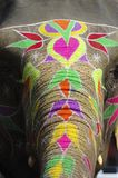 India Jaipur painted elephant Stock Images