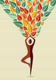 India joga istoty ludzkiej drzewo Fotografia Royalty Free