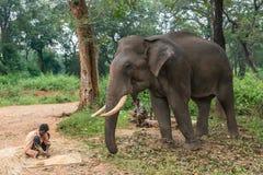 India, Karnataka, Ayarabeedu, forest, Tribe, tribal, elephant, w. Ayarabeedu forest, Karnataka, India - November 1, 2013: Three tribal men and their dark skinned royalty free stock photos