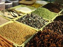 india kryddor Arkivfoton