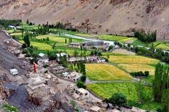 India - Ladakh (little Tibet) landscape Royalty Free Stock Photo
