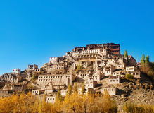 India Ladakh Thiksey Monastery Stock Images